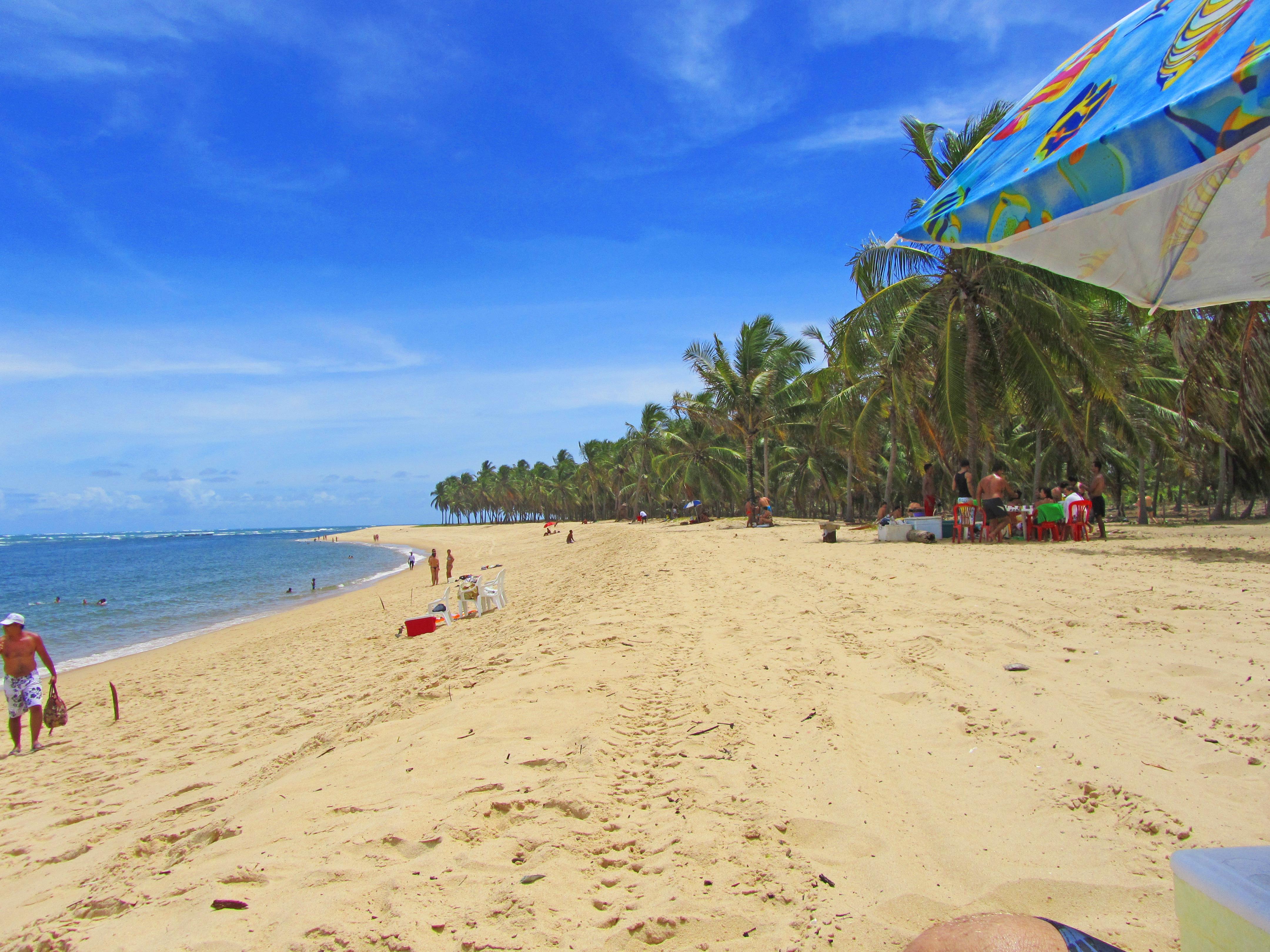 Praia do Gunga Photo by Ana Holske Marmo @ana.marmo trip Alagoas e Pernambuco